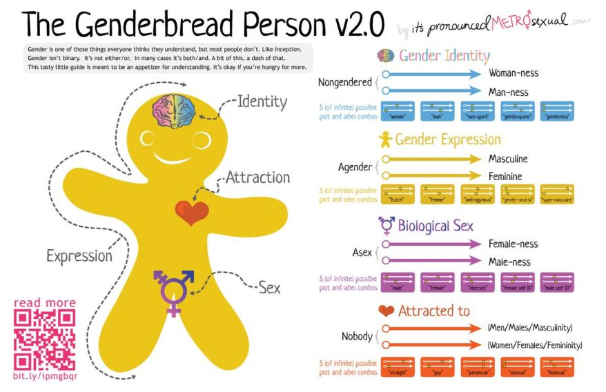 genderbread_2-1