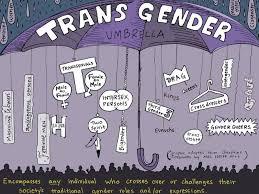 transgender umbrella