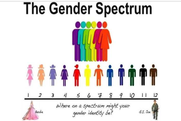 Gender spectrum illustration