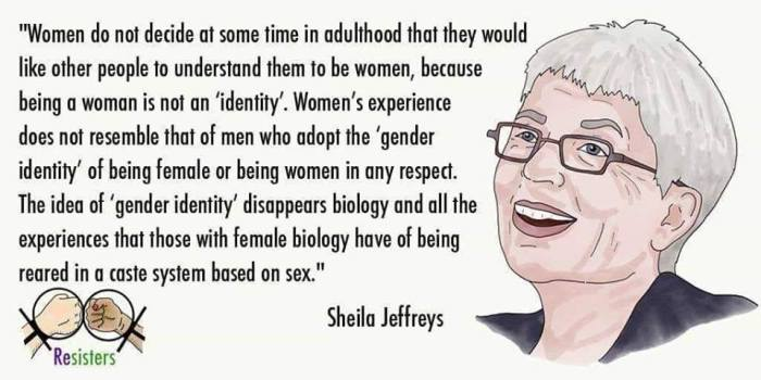 Jeffreys quote on gender ID