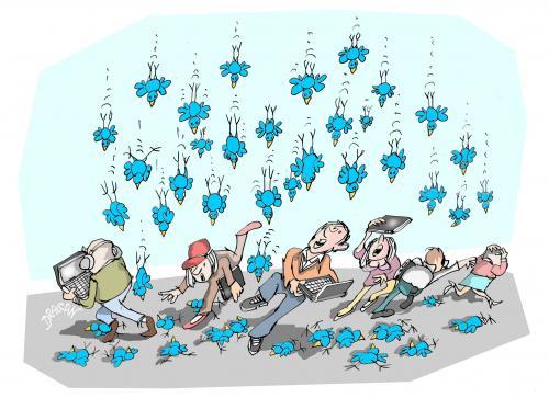 pluie de twits