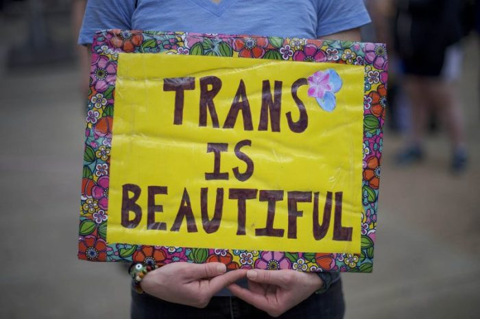 trans is beautiful manif